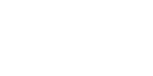 Artvein Medical